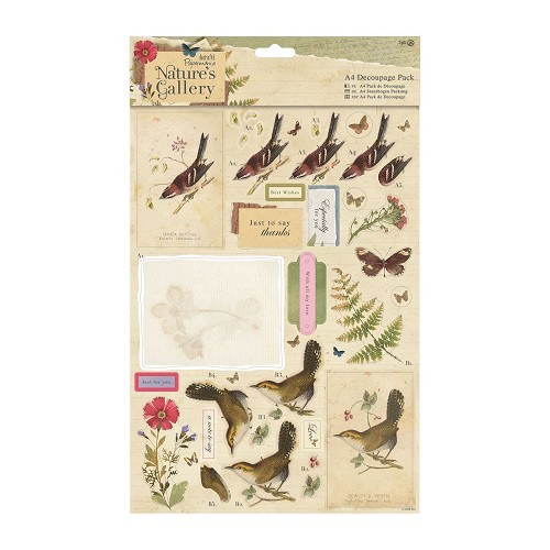 Docrafts: Nature's Gallery A4 Decoupage Pack - Collage (PMA 169121)